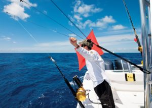 caught electric fishing reels